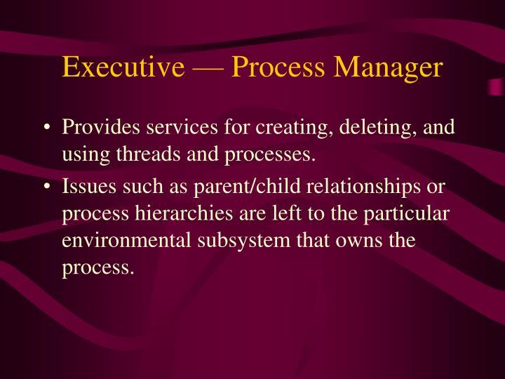 Executive — Process Manager