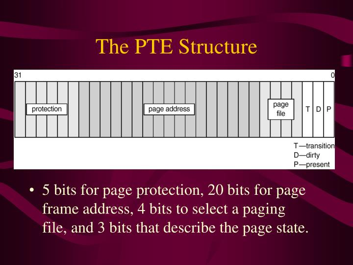 The PTE Structure