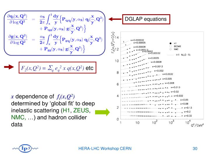DGLAP equations