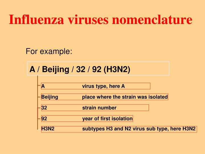Influenza viruses nomenclature