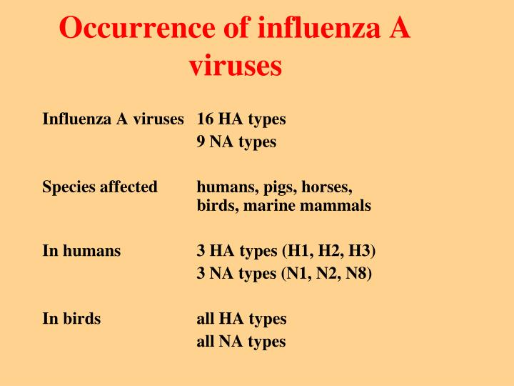 Occurrence of influenza A viruses
