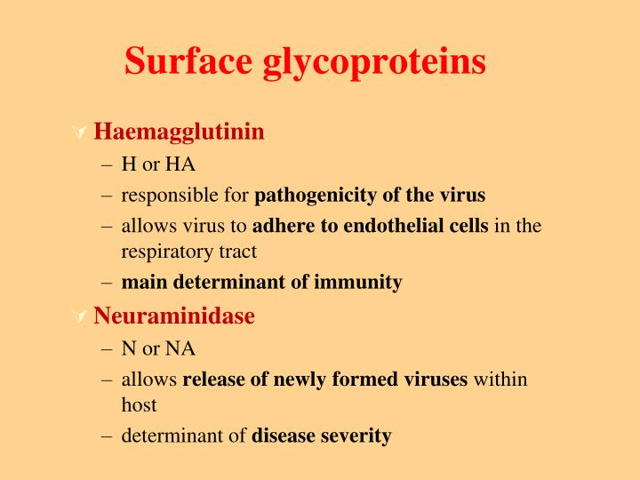 Surface glycoproteins