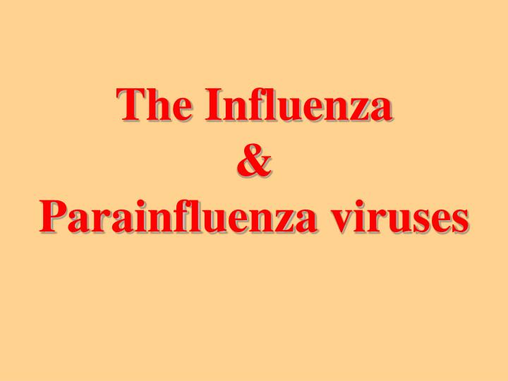 The influenza parainfluenza viruses
