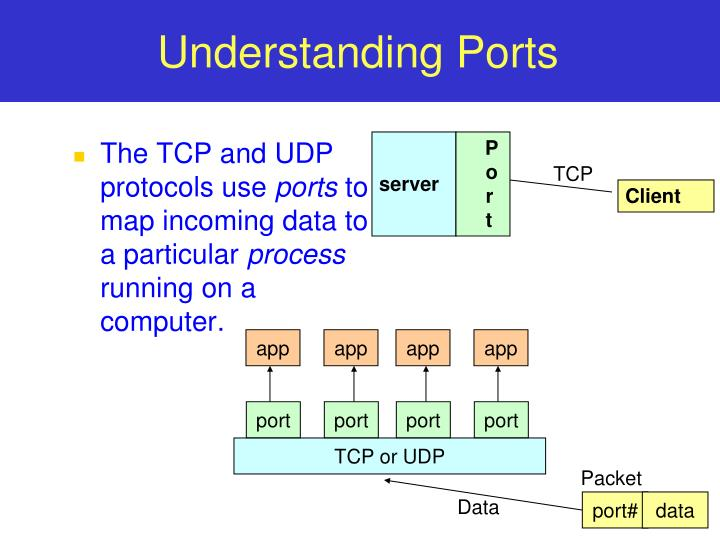 The TCP and UDP protocols use