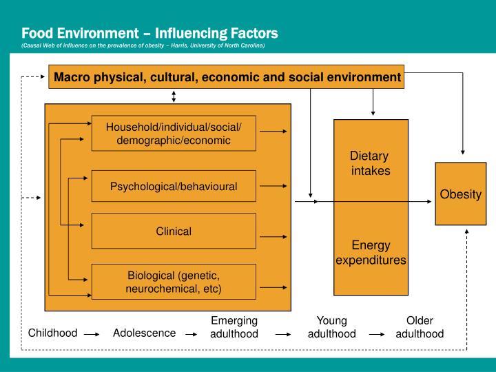 Food Environment – Influencing Factors