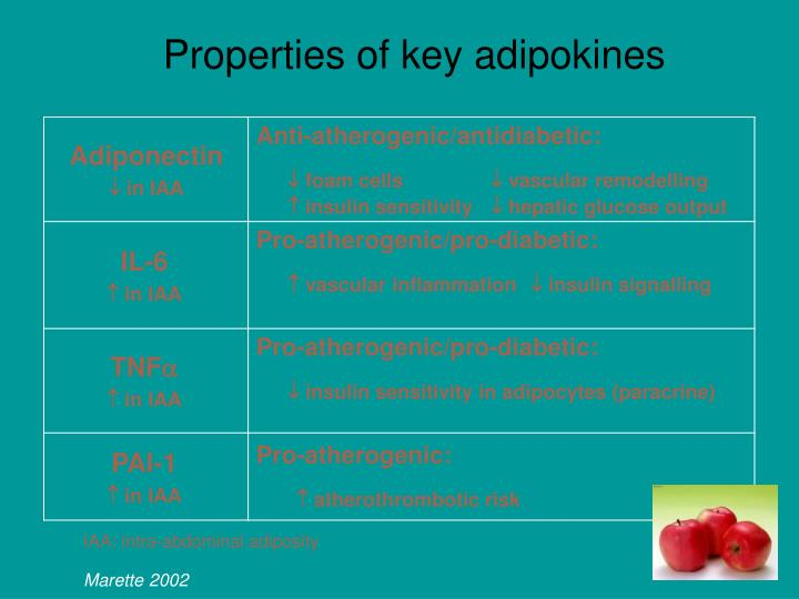 Properties of key adipokines