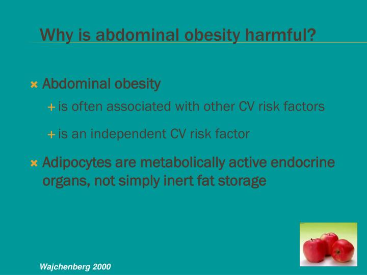 Why is abdominal obesity harmful?