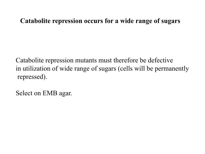 Catabolite repression occurs for a wide range of sugars