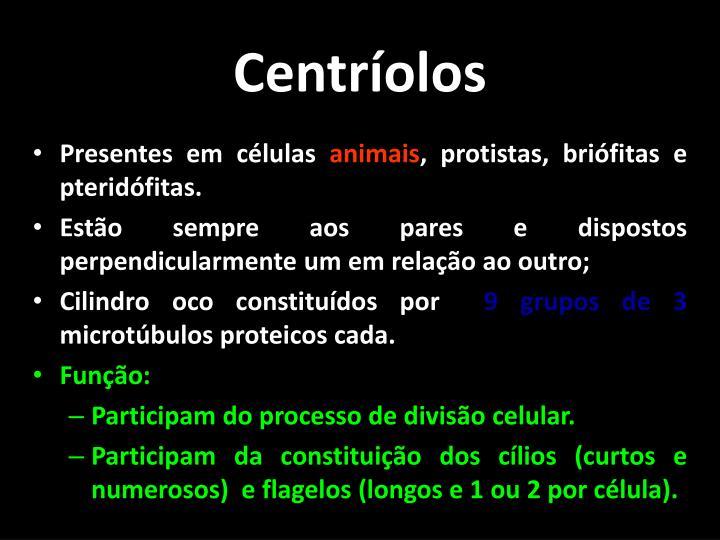 Centríolos