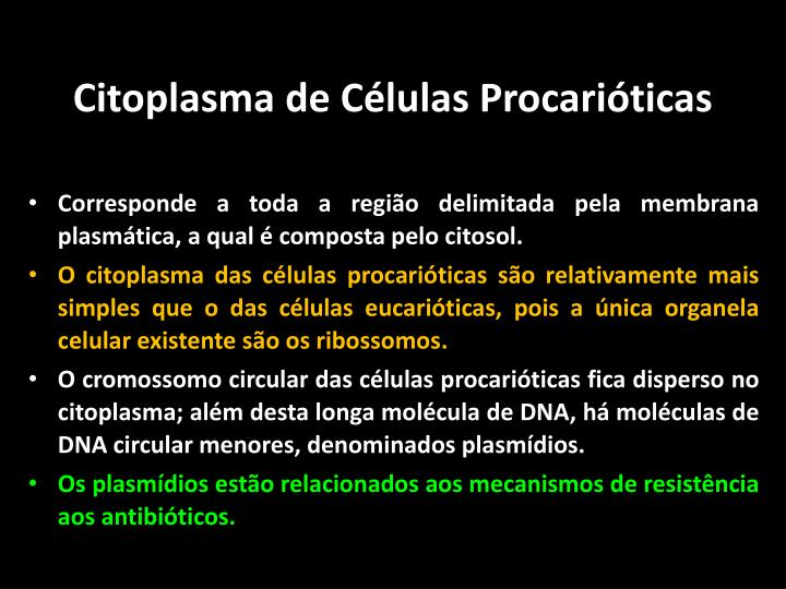 Citoplasma de Células Procarióticas
