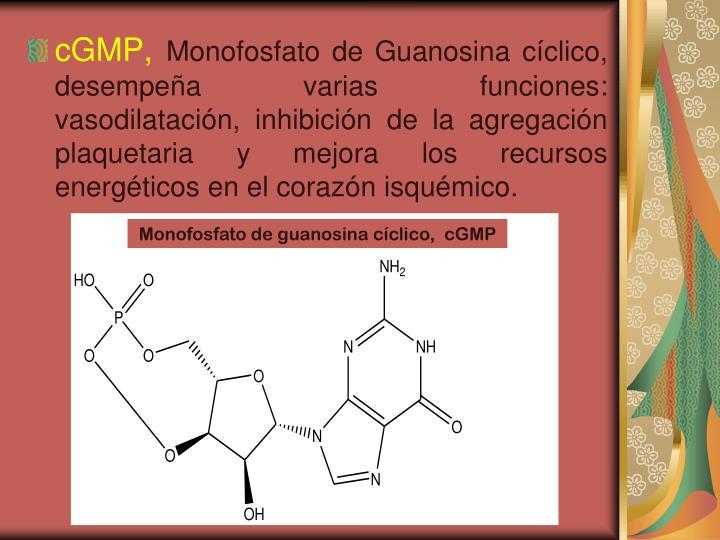 cGMP,