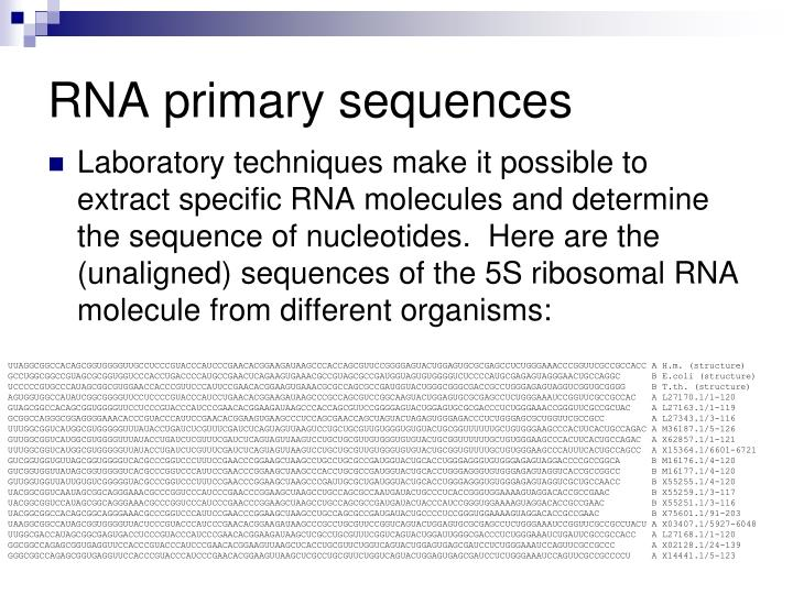Rna primary sequences