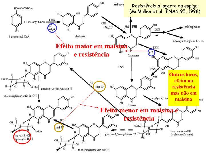 Resistência a lagarta da espiga (McMullen et al., PNAS 95, 1998)