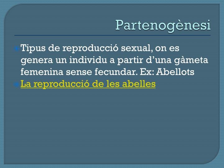 Partenogènesi