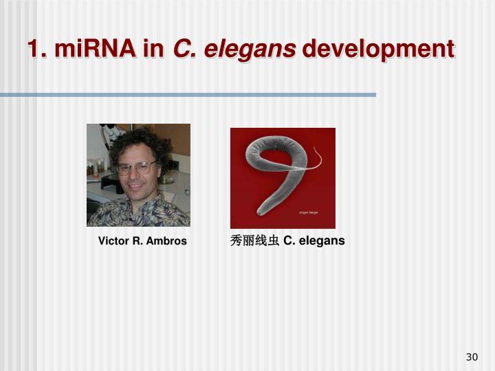 1. miRNA in