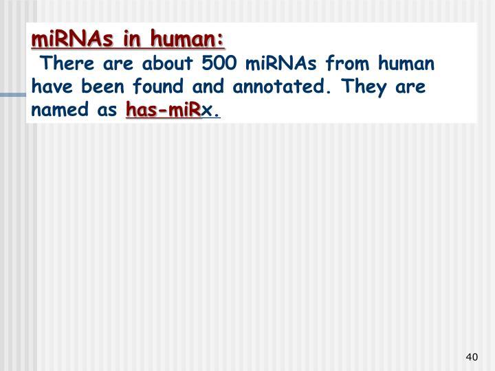 miRNAs in human: