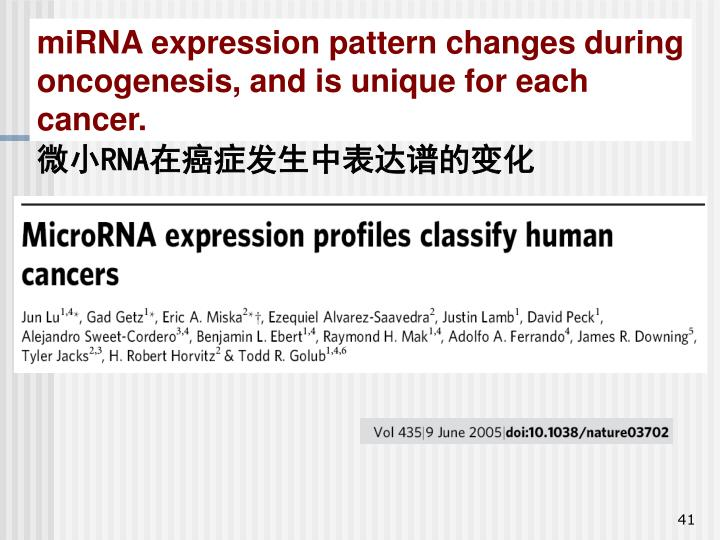 miRNA expression pattern changes during oncogenesis, and is unique for each cancer.