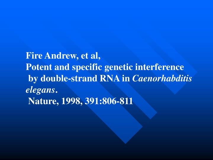 Fire Andrew, et al,
