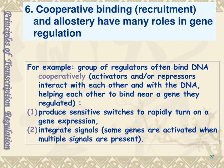 6. Cooperative binding (recruitment) and allostery have many roles in gene regulation