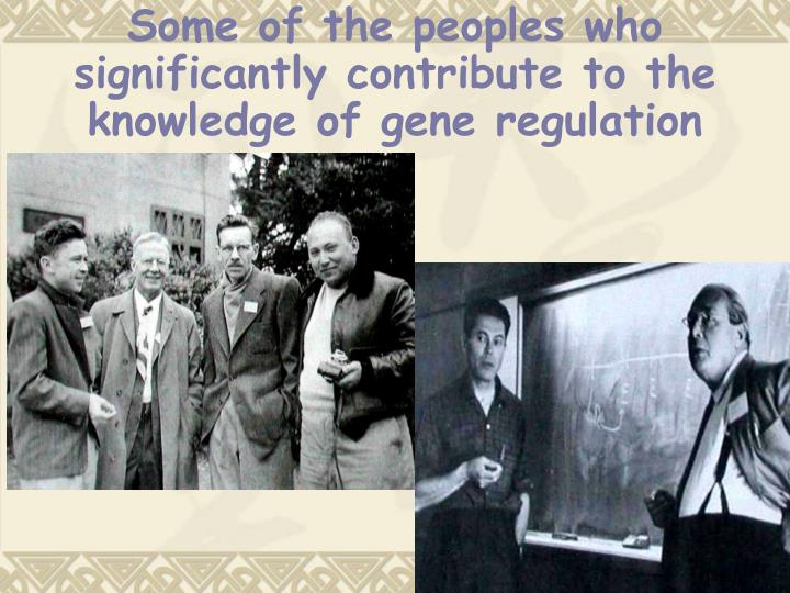 Some of the peoples who significantly contribute to the knowledge of gene regulation