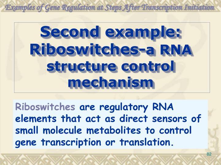 Examples of Gene Regulation at Steps After Transcription Initiation