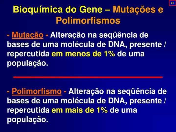 Bioquímica do Gene –