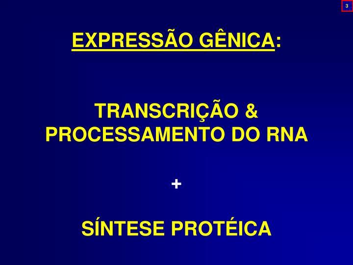 EXPRESSÃO GÊNICA