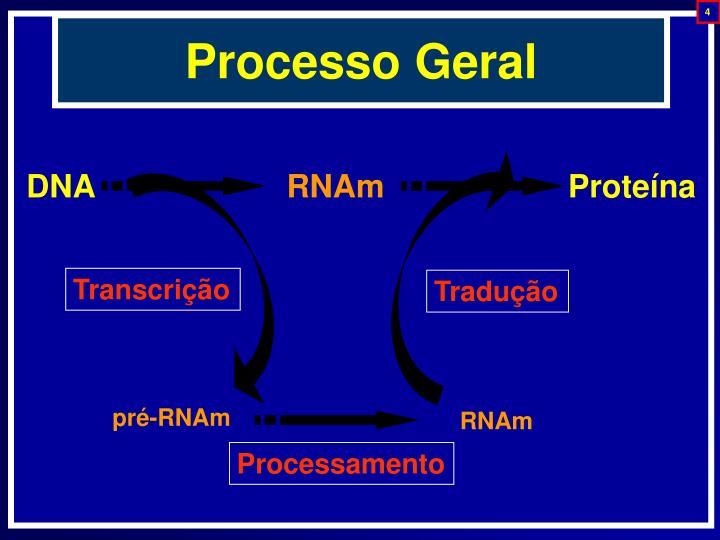 Processo Geral