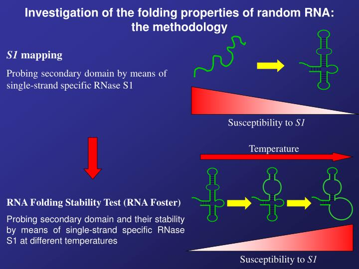 Investigation of the folding properties of random RNA: