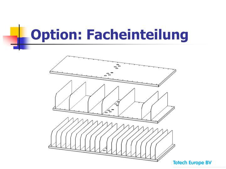 Option: Facheinteilung
