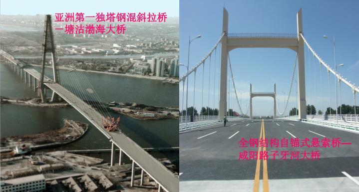 亚洲第一独塔钢混斜拉桥-塘沽渤海大桥