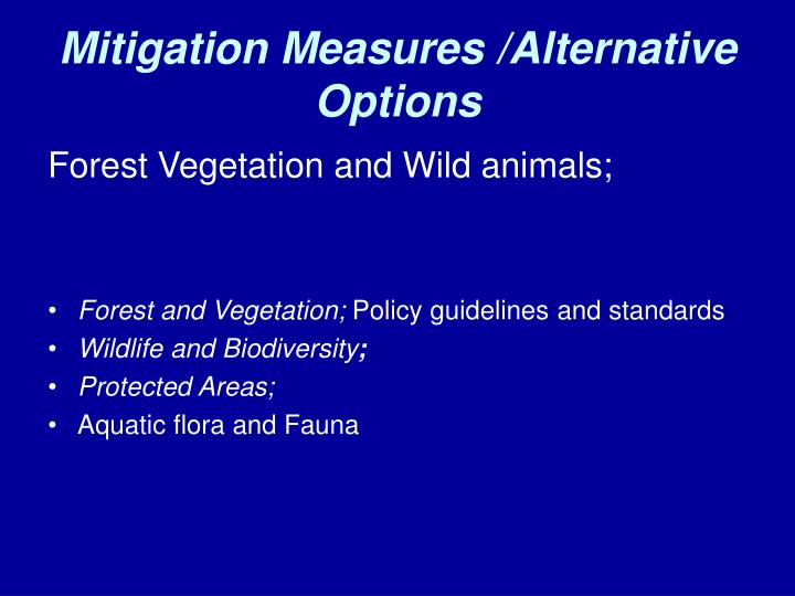 Mitigation Measures /Alternative Options