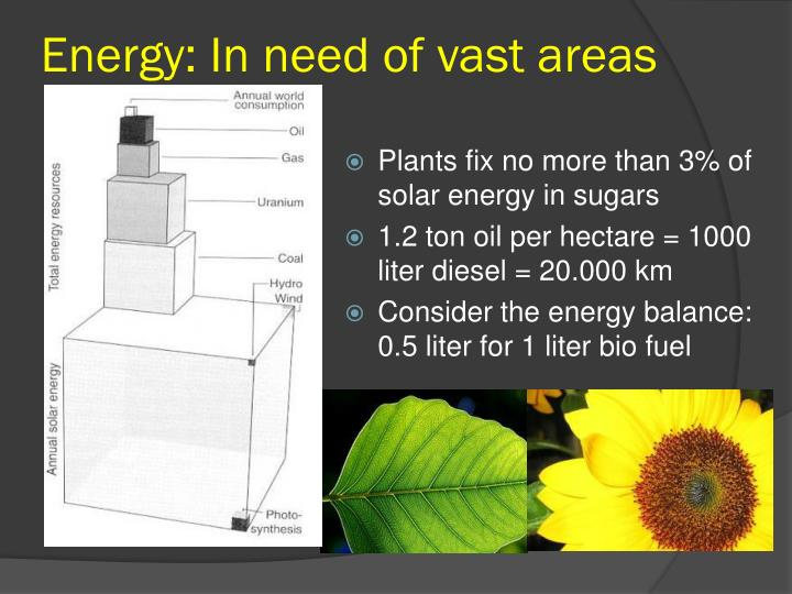 Energy: In need of vast areas
