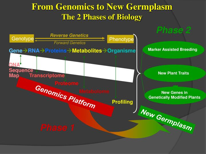 From Genomics to New