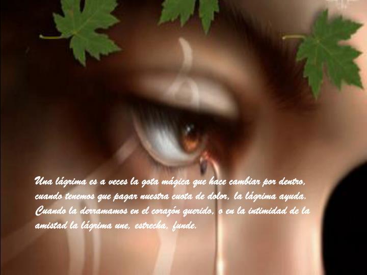 Una lágrima es a veces la gota mágica que hace cambiar por dentro, cuando tenemos que pagar nuestra cuota de dolor, la lágrima ayuda. Cuando la derramamos en el corazón querido, o en la intimidad de la amistad la lágrima une, estrecha, funde.