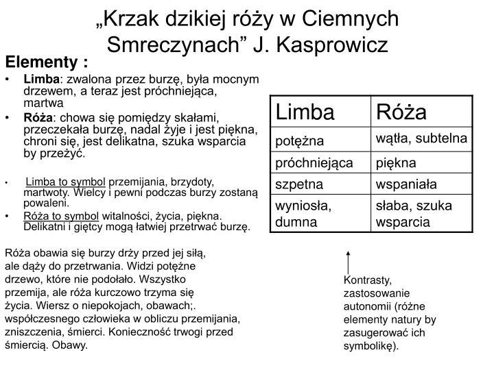 """""""Krzak dzikiej róży w Ciemnych Smreczynach"""" J. Kasprowicz"""