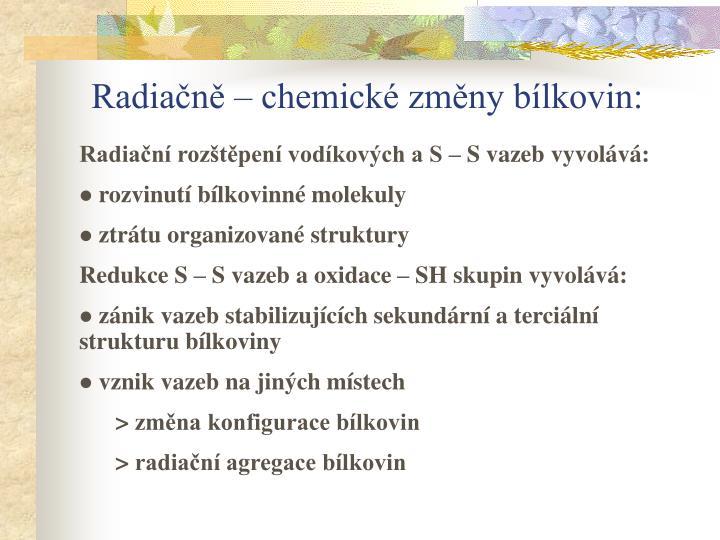 Radiačně – chemické změny bílkovin:
