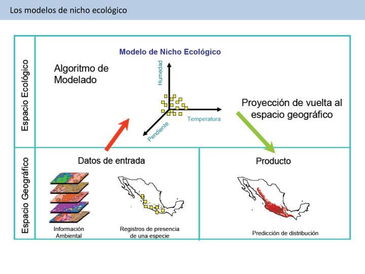 Los modelos de nicho ecológico