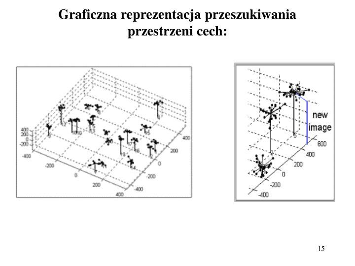 Graficzna reprezentacja przeszukiwania przestrzeni cech: