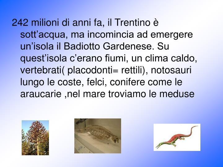 242 milioni di anni fa, il Trentino è sott'acqua, ma incomincia ad emergere un'isola il Badiotto Gardenese. Su quest'isola c'erano fiumi, un clima caldo, vertebrati( placodonti= rettili), notosauri lungo le coste, felci, conifere come le araucarie ,nel mare troviamo le meduse