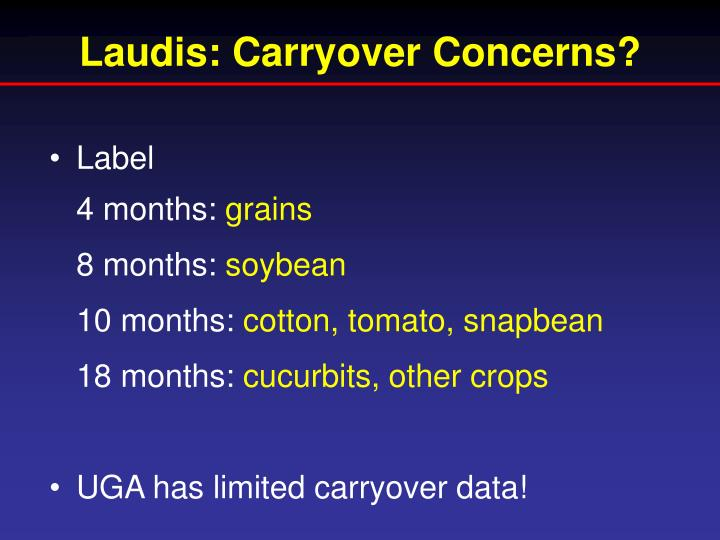 Laudis: Carryover Concerns?