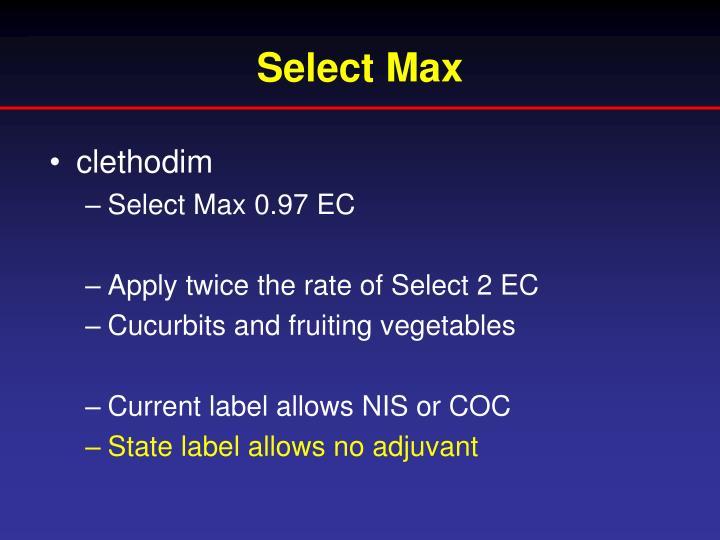 Select Max