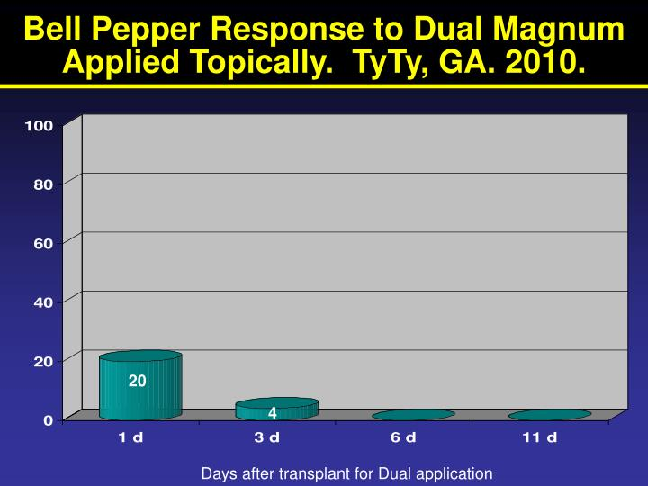 Bell Pepper Response to Dual Magnum Applied Topically.  TyTy, GA. 2010.