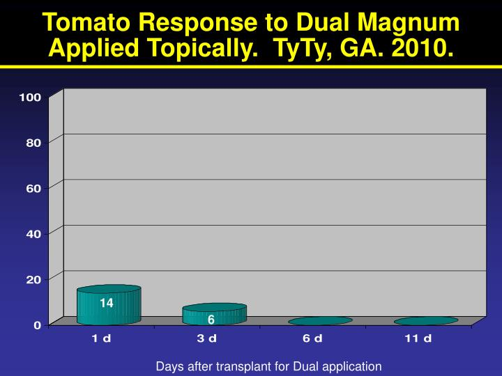 Tomato Response to Dual Magnum Applied Topically.  TyTy, GA. 2010.