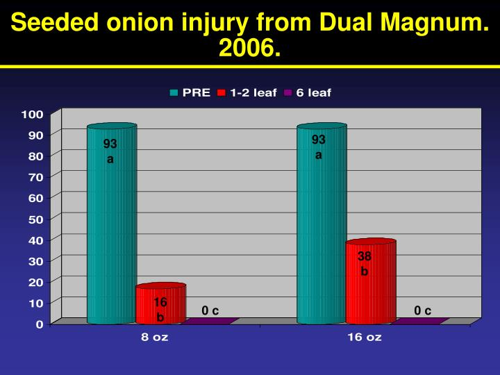 Seeded onion injury from Dual Magnum. 2006.