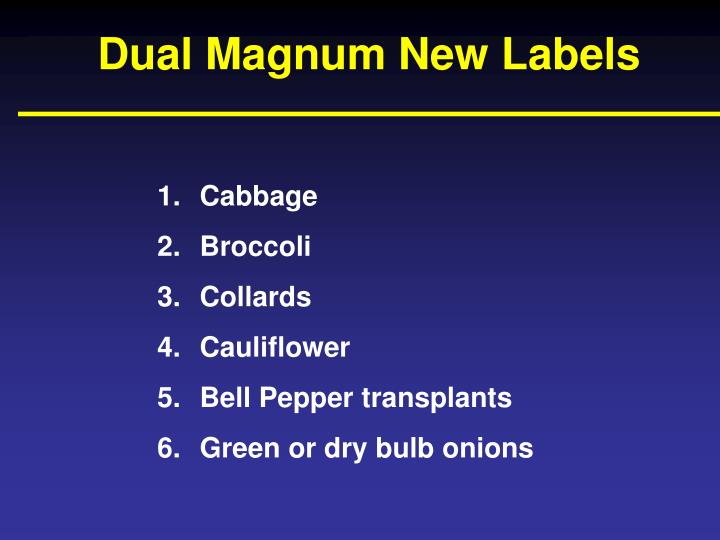 Dual Magnum New Labels