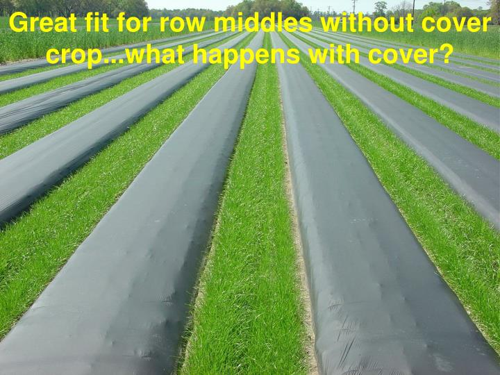 Great fit for row middles without cover crop...what happens with cover?