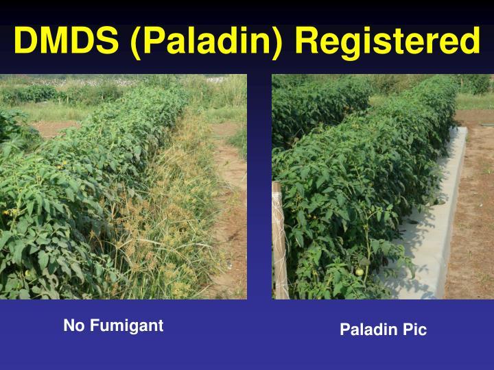 DMDS (Paladin) Registered