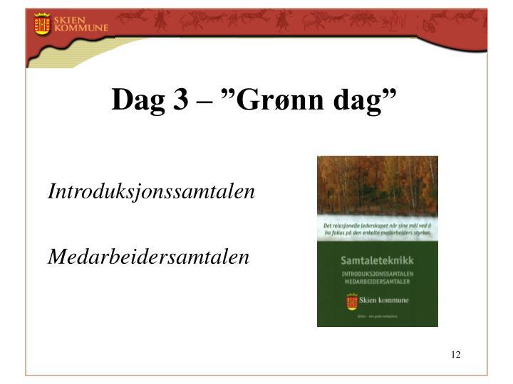 """Dag 3 – """"Grønn dag"""""""