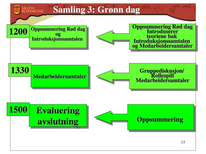 Samling 3: Grønn dag